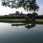 pond-placid