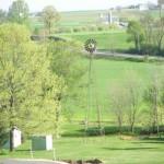 windmill-field
